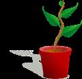 flowerpot-148267__340